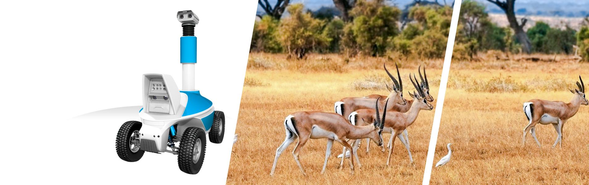 Outdoor telepresence Robot for virtual tourism