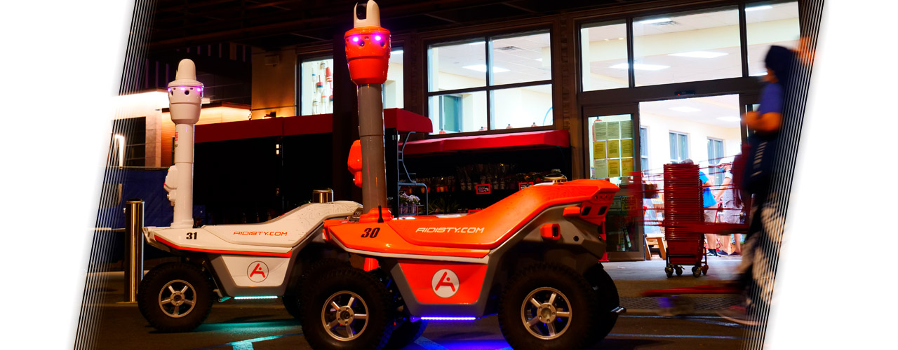 Public safety and security robots