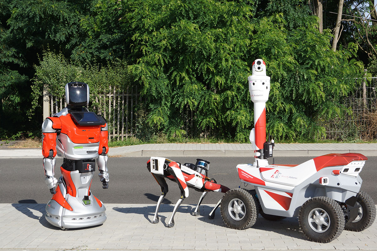 Meeting robots in Germany